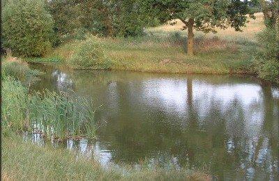 Sweyne Park