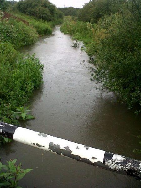 Rawreth Brook 8th July 2012