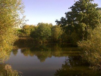 Sweyne Park Oct 2013 1