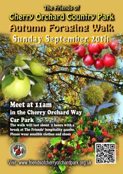 foraging walk
